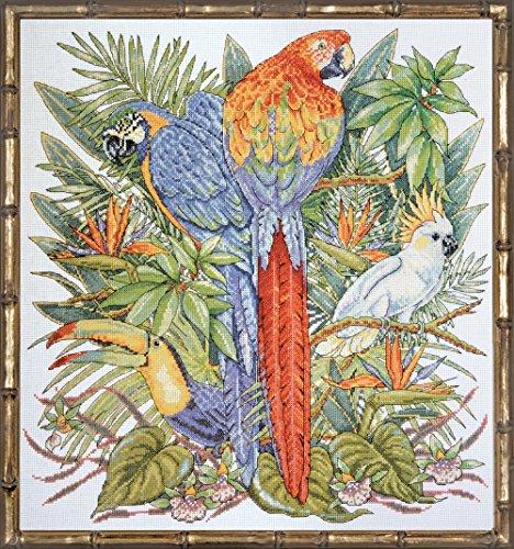 """Oiseaux de paradis compté Stitch Kit-16 """"X 17"""" 14 barres"""