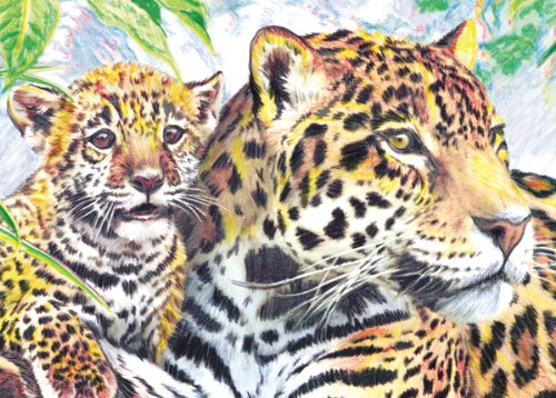 Royal & Langnickel Mini Colour Pencil By Number Kit: 5x7 Jaguar Family - 1
