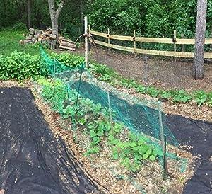 KINGLAKE 33 Ft x 13 Ft Green Garden Bird Net,Green Garden Plant Netting,Garden Plant Fruits Fencing Mesh (Tamaño: 33 Ft x 13 Ft)