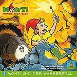 Monti und der Wasserfall (Montis Abenteuer 1) | Martin Steimann