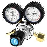 CO2 Pressure Regulator CO2 Pressure Reducer Dual Gauge Gas Bottle Regulator Carbon Dioxide Welding Pressure Reducer