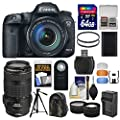 Canon EOS 7D Mark II GPS Digital SLR Camera Body with 64GB Card + Backpack + Battery/Charger + Tripod + Remote + Tele/Wide Lens Kit
