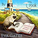 By Book or by Crook: Lighthouse Library Mystery Series # 1 (       UNABRIDGED) by Eva Gates Narrated by Elise Arsenault