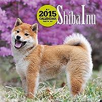柴犬 (2015年大判カレンダー)