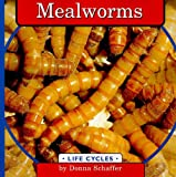 Mealworms (Life Cycles)