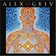 Alex Grey 2009 Wall Calendar