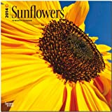 Sunflowers 2014 Wall BrownTrout