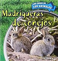 Madrigueras de conejos