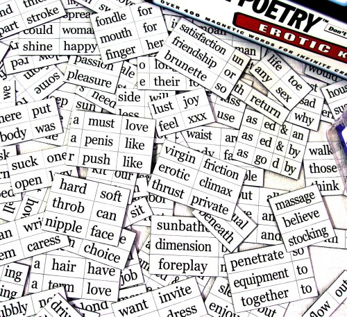 Erotic Fridge Magnet Poetry Set - Fridge Poetry (Erotic Fridge Poetry compare prices)