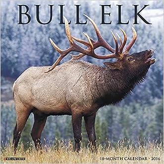 2016 Bull Elk Wall Calendar