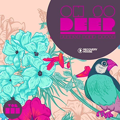 VA-Oh so Deep Finest Deep House Vol 3-(RHCOMP2051)-WEB-2015-wAx Download