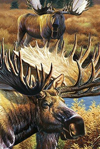 Gift Trenz Moose- 3D Magnet