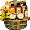 Art of Appreciation Gift Baskets   Citrus Splash Spa Bath and Body Set