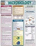 Microbiology (Quickstudy: Academic)