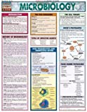 img - for Microbiology (Quickstudy Reference Guides - Academic) book / textbook / text book