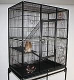 TOP1 XXL Nagervolie re für Hamster, Mäuse, Ratten, Chinchilla