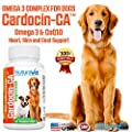 Cardocin-CA Omega 3 Complex For Dogs By NuturaVet - Dietary Supplement With Fish Oil & CoQ10 - Unique Blend Promotes Heart Health & Heals Skin Conditions - 120 Chewable Tablets - Made In The USA
