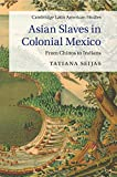 Asian Slaves in Colonial Mexico: From Chinos to Indians (Cambridge Latin American Studies)