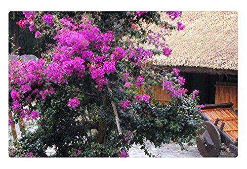 "Rock Bull Doormat - Poolside beautiful flower, 23.6""x15.7"""