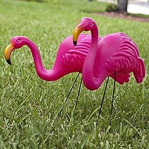 Hot Pink Flamingo 2 pack