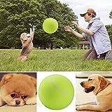Groten Tennis Ball Kugel große riesige Hund Welpen Thrower Chucker