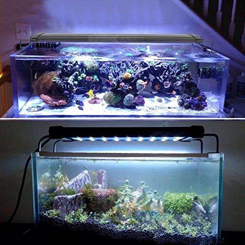Mingdak led aquarium light fixtures for fish tanks led for Blue light for fish tank