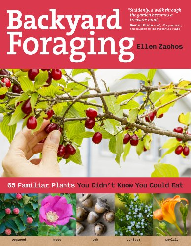 Backyard Foraging: 65 Familiar Plants You Didn't Know You Could Eat (Plants You Can Eat In The Wild compare prices)