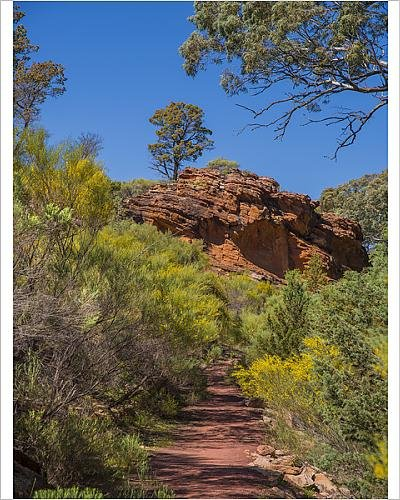 photographic-print-of-wilpena-canyon-flinders-ranges-outback-south-australia