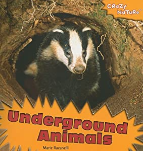Underground Animals Cover