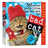 Bad Cat Page-A-Day Calendar 2011
