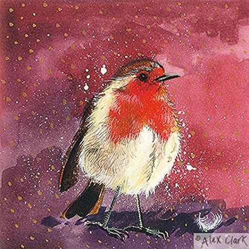 alex-clark-charity-christmas-cards-robin-red-breast-pack-of-5-1-free-alex-clark-card-with-every-orde