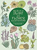 img - for Big Book of Plant and Flower Illustrations (Dover Pictorial Archive) book / textbook / text book