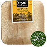 Leafplates - Palm Leaf Plates - 9.5 Inch Square - All Natural 100% Compostable - Perfect Disposable Party Plates - 20 Count