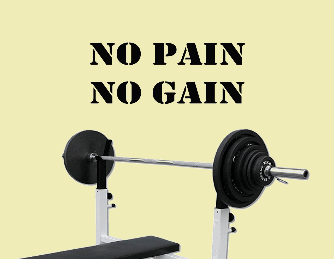 No Pain No Gain Excercise Workout Gym Health and Fitness Vinyl Lettering Wall Art Quotes Decal