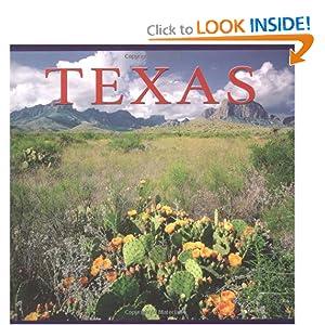 Texas (America Series) download