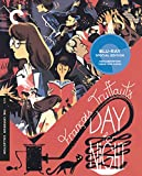 Day For Night [Blu-ray] (Version française)