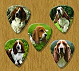 Basset Hound 5 Loose Guitar Picks