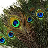 """100pcs Natural Peacock Feathers with Eye (10""""-12"""") High Quality Peacock Tail Feathers"""