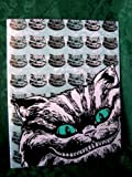 Tim Burton Alice in Wonderland Cheshire Cat Folder