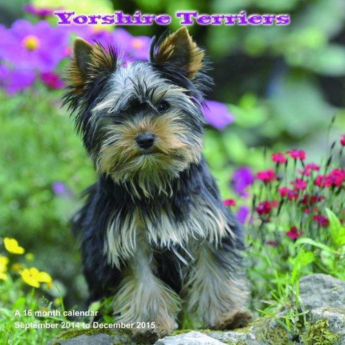 616VIpGeXqL 2015 Dog Calendars
