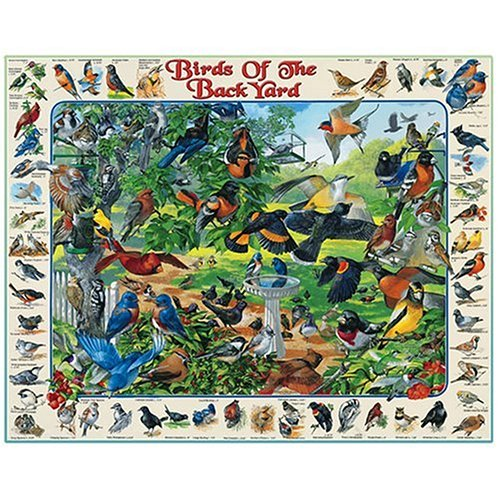 Cheap Fun White Mountain Puzzles Birds of the Backyard (B000A8PLQU)