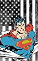 Licenses Products DC Comics Superman Flag Sticker