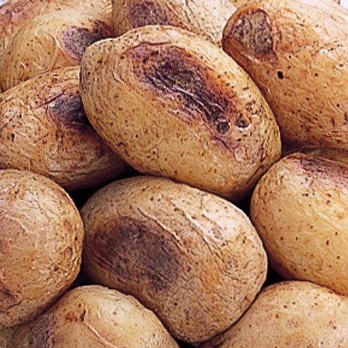 ホクレン ベークドポテトマチルダミニ 1kg  冷凍