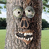 Zombie Outdoor Tree Face from WHATONEARTH