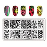 Summer Fruit Nail Art Stamping Template Tropical Punch Pattern Rectangle Image Plate Stamping Polish Needed BPL-024 (Color: BPL-024)