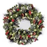National Tree 24-Inch Crestwood Spruce Wreath with Silver Bristle/Cones/Red Berries/Glitter/50 Clear Lights - Plug In