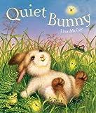 Quiet Bunny 封面