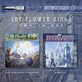 Back In The World Of Adventures/Retropolis by Flower Kings (2006-02-24)