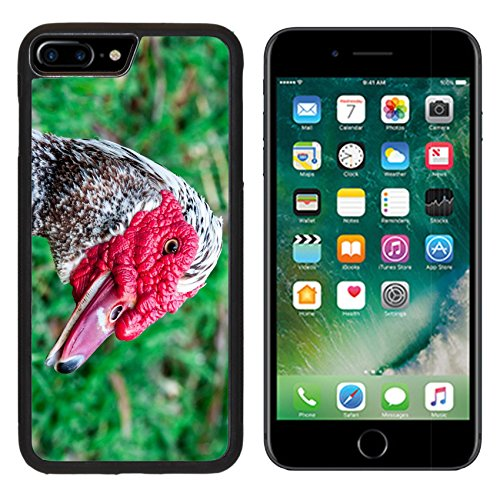 MSD Premium Apple iPhone 7 Plus Aluminum Backplate Bumper Snap Case Butchered Duck on the green grass Image ID 23721733 (Butchered compare prices)