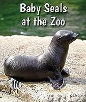 Baby Seals at the Zoo